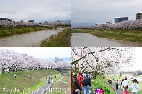 春の福井テレビ祭 (19)