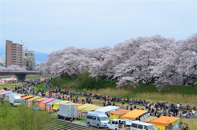 春の福井テレビ祭 (27)