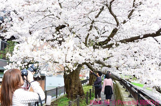 春の福井テレビ祭 (30)