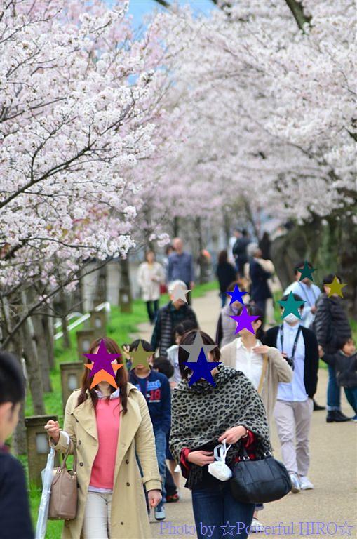 春の福井テレビ祭 (20)