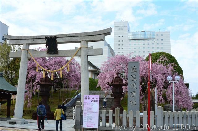 春の福井テレビ祭 (34)