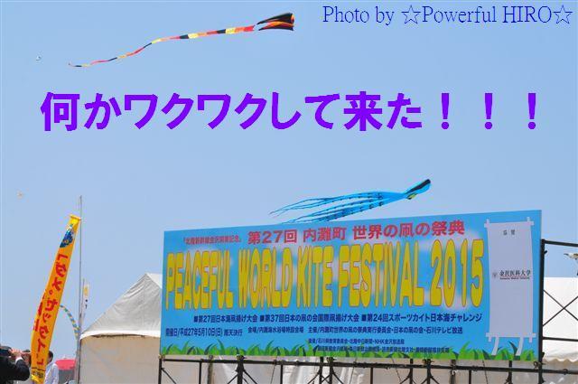 世界の凧の祭典 (7)