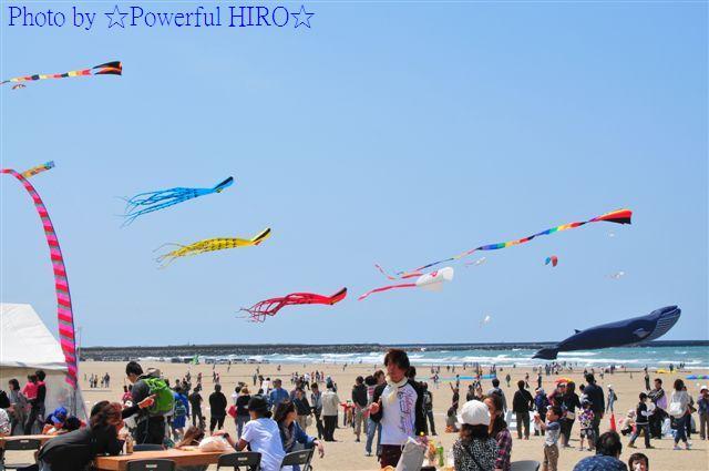 世界の凧の祭典 (9)