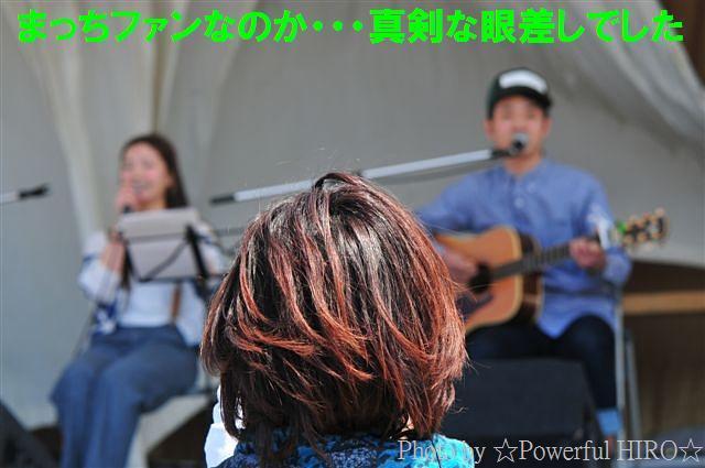 世界の凧の祭典 (36)