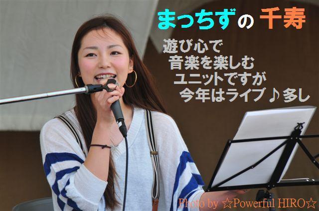 世界の凧の祭典 (44)