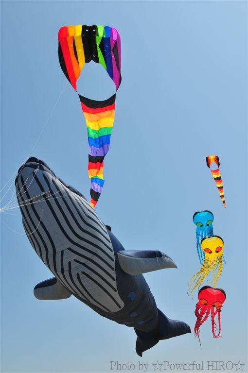 世界の凧の祭典 (54)