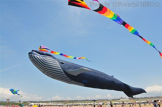 世界の凧の祭典 (57)