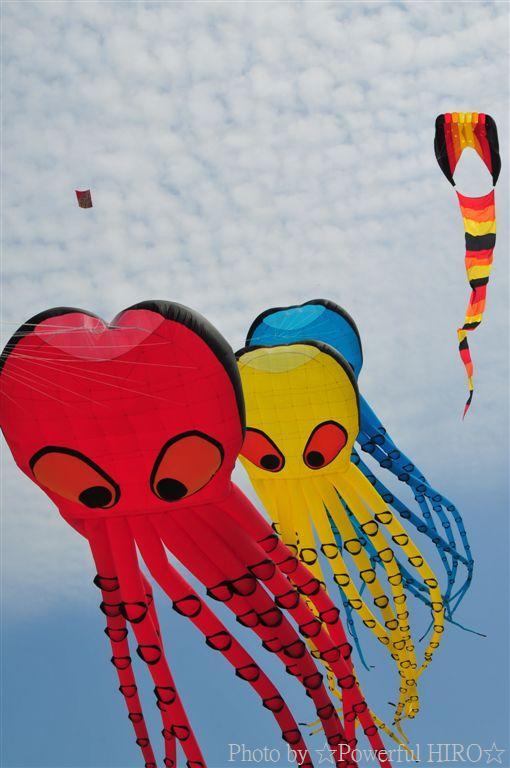 世界の凧の祭典 (59)
