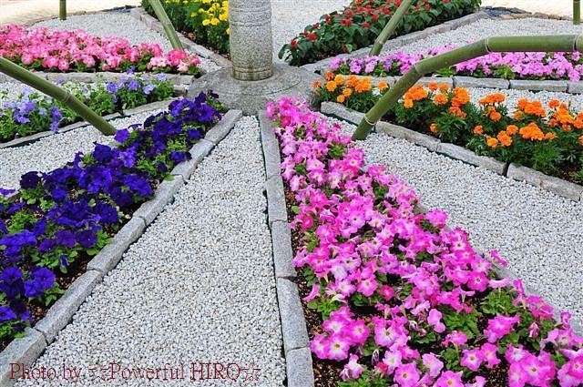 第66回 全国植樹祭 いしかわ2015 (49)