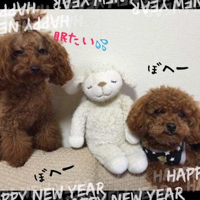 201501011630566fc.jpg