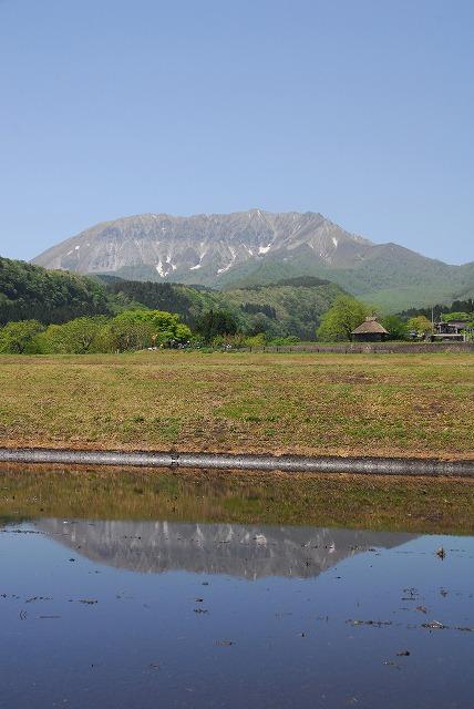 大山と花 (389)