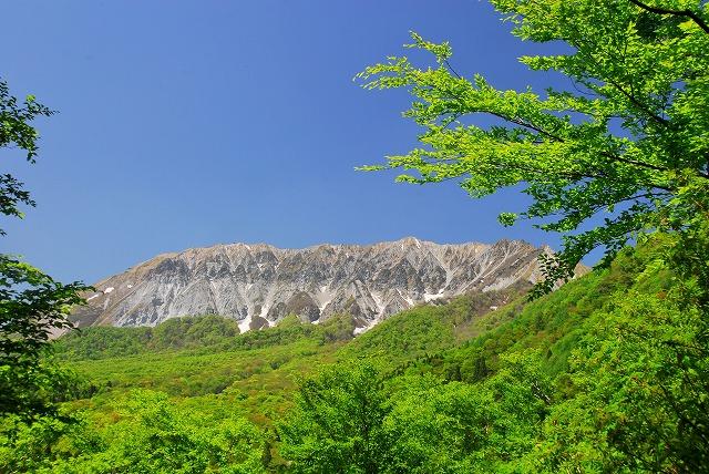 大山と花 (408)