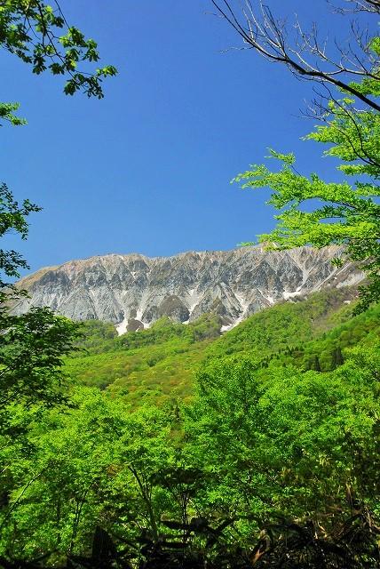 大山と花 (414)