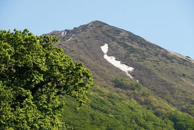 大山と花 (513)