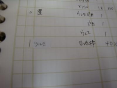 DSC04916.jpg
