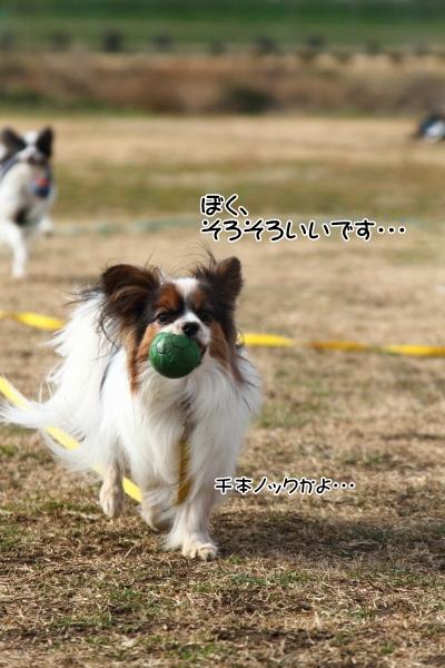 IMG_5068走り初め走り初め