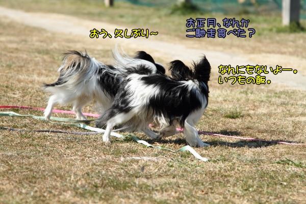 IMG_5701テッちゃん蓮くんテッちゃん蓮くん