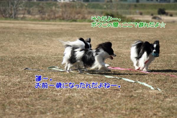 IMG_5703テッちゃん蓮くんテッちゃん蓮くん