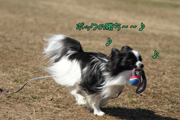 IMG_5757テッちゃん蓮くんテッちゃん蓮くん