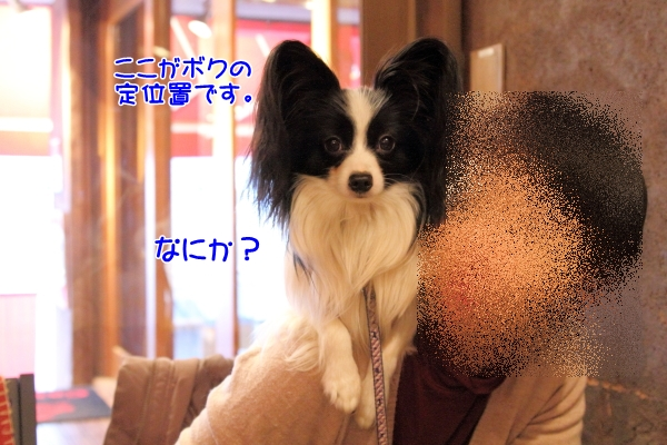 IMG_5848テッちゃん蓮くんテッちゃん蓮くん