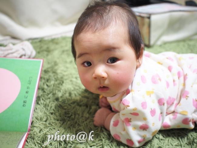 P3061556赤ちゃんズ