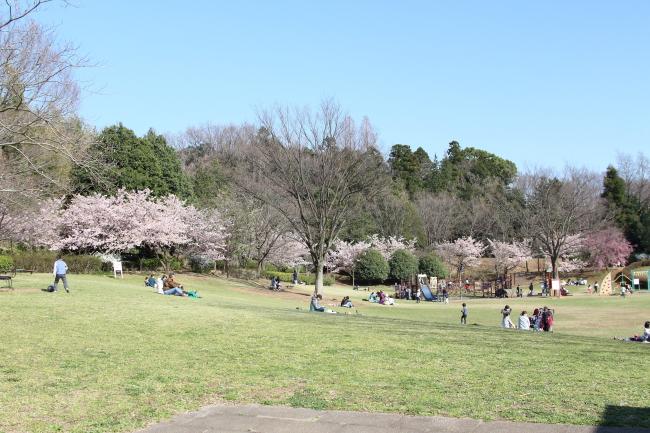 IMG_5307サブレとふるさと公園サブレとふるさと公園