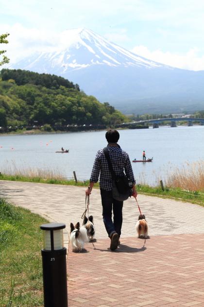 IMG_8000山中湖山中湖