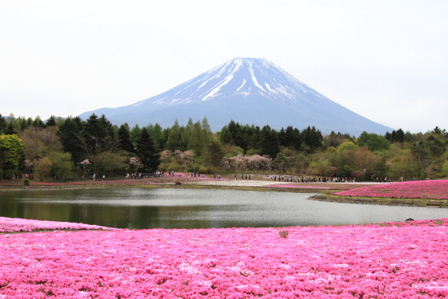 IMG_7945山中湖山中湖