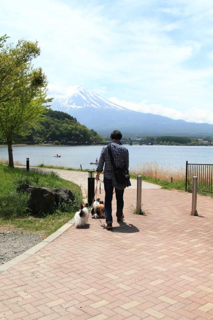 IMG_7999山中湖山中湖