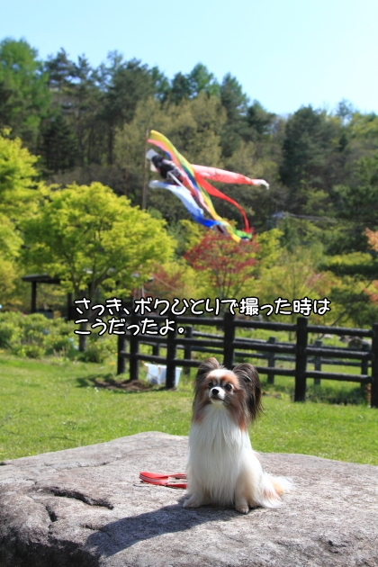 IMG_8041山中湖山中湖