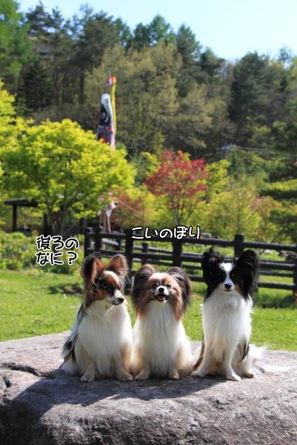 IMG_8043山中湖山中湖