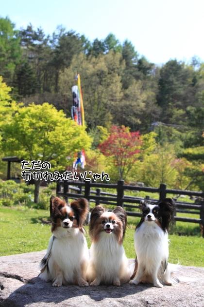 IMG_8044山中湖山中湖