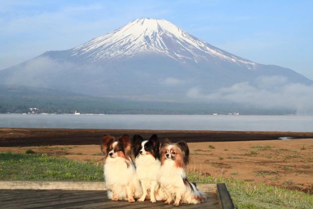 IMG_8183山中湖山中湖