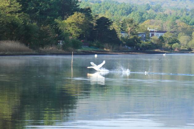 IMG_8251山中湖山中湖