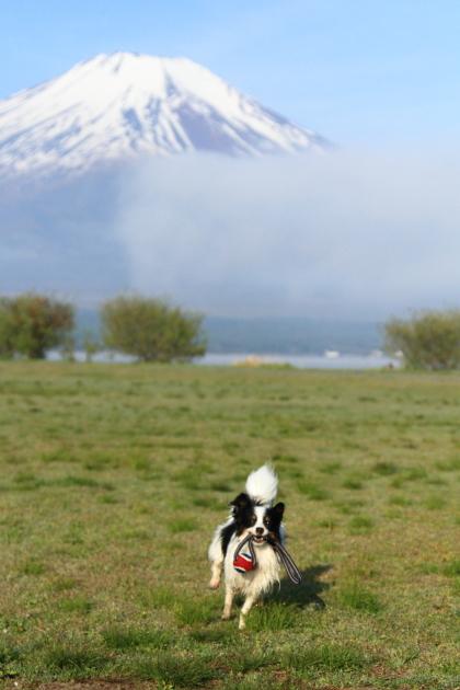 IMG_8229山中湖山中湖