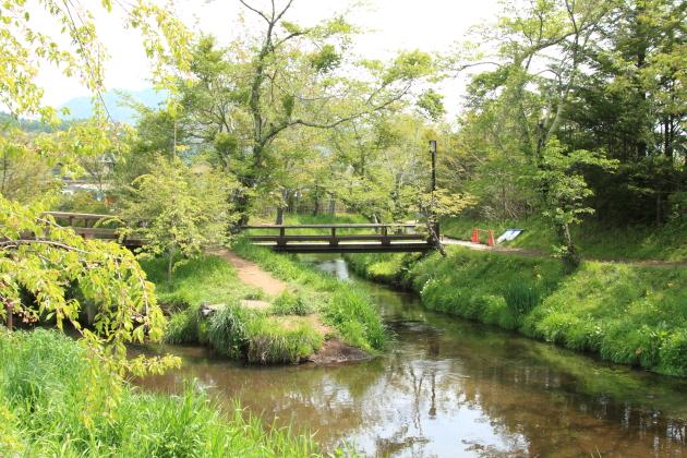 IMG_8343山中湖山中湖