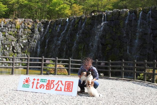 IMG_8046山中湖山中湖