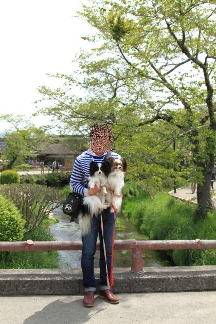 IMG_8347山中湖山中湖