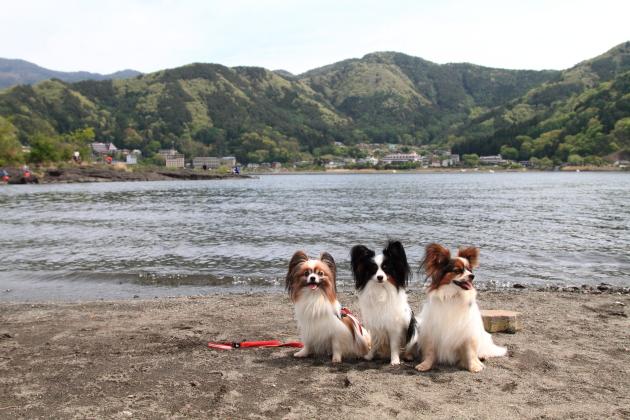 IMG_7973山中湖山中湖