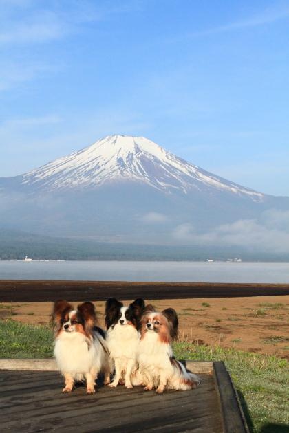 IMG_8184山中湖山中湖