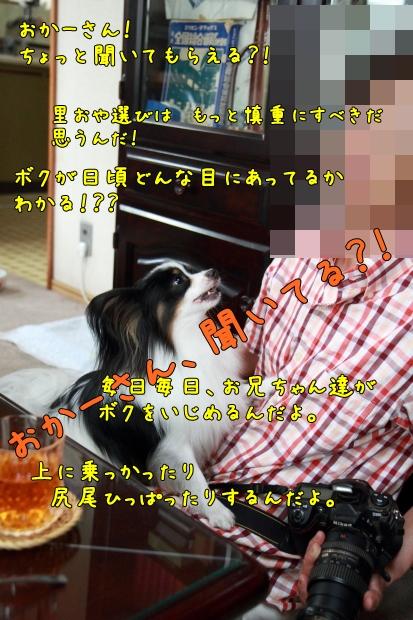 IMG_9623ELFさんELFさん