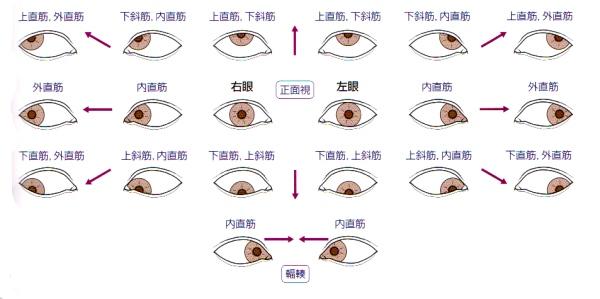 201210_09_28_c0113928_18221544.jpg