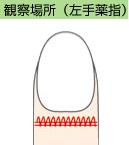 image_top01.jpg