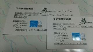 DSC_0354rzj1.jpg