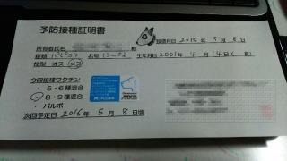 DSC_0518n3.jpg