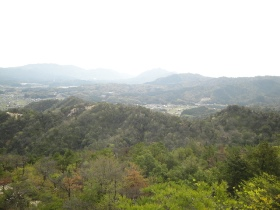 大梅山稜線