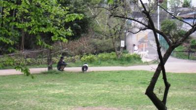 手通公園10
