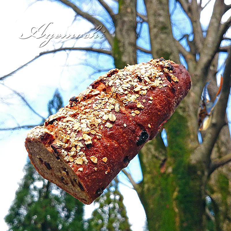 木の実とドライフルーツのパン