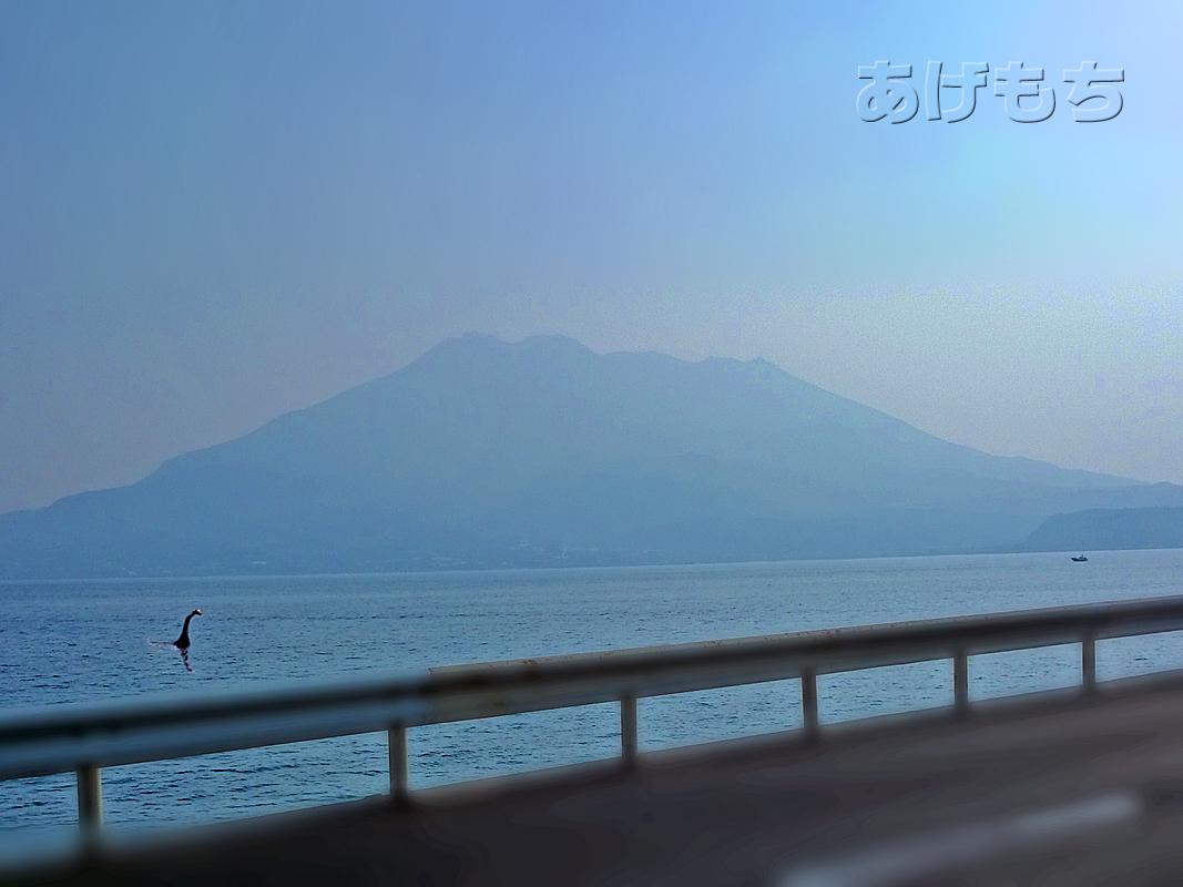店内からは桜島を眺めることができます。