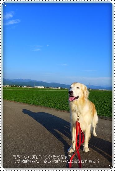 2015,6,29琵琶湖2